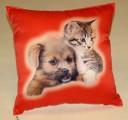 Fotopolštářek - Kotě a pes na červeném